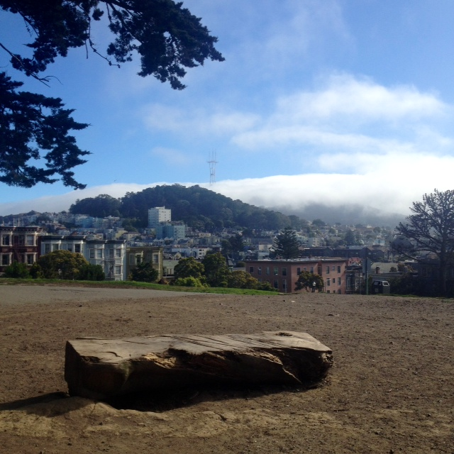 We sat on an old log in Alamo Square