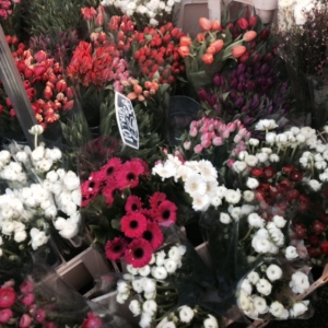 literally the only photo i took at the columbia road flower market